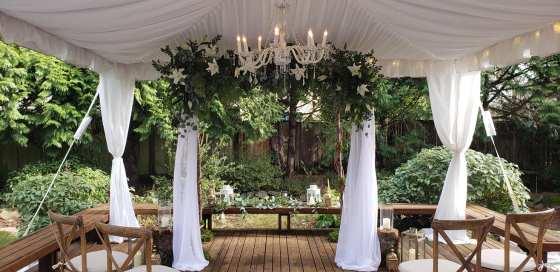 Small backyard Covid-safe wedding.